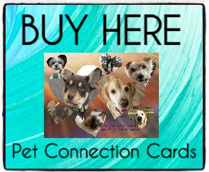 Pet_Connection_Cards